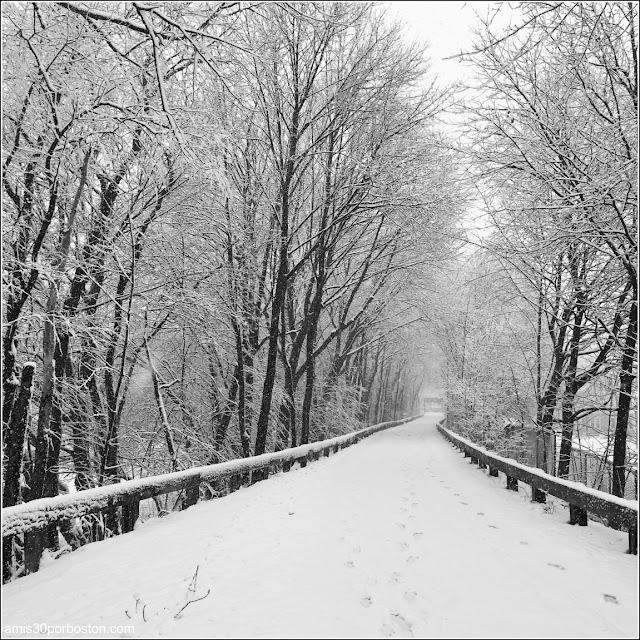 Invierno en Boston - Minuteman Bikeway, Arlington