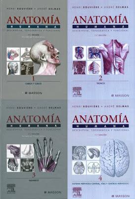Anatomia Humana. Descriptiva, Topografica y Funcional - Rouviere, Delmas - 11 Edicion