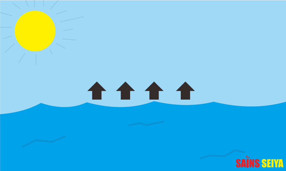 Ini alasan ilmiah mengapa air laut harus asin  Web Resmi