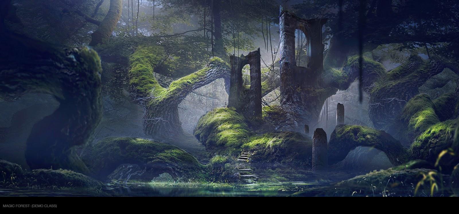 Forest Wallpaper Hd Juan Pablo Rold 193 N