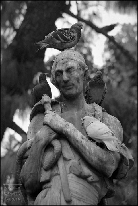 palomas,escultura,valencia,estatua,fotografia