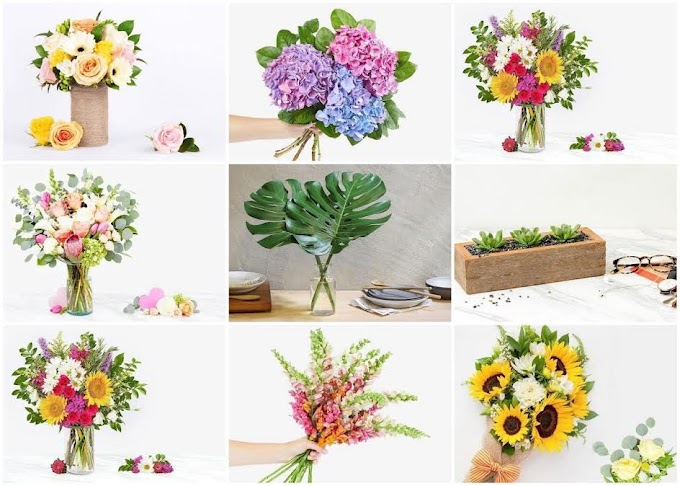 Freshly Bouquet of Flowers that You'll Love to See