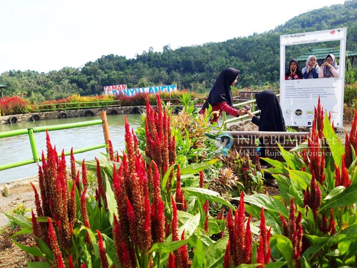 Tak Hanya Taman Bunga, Taman Banyu Langit Suguhkan Terasering Hingga Persinggahan  Pangeran Diponegoro