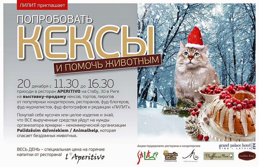 Lilit & Animalhelp Charity Fair