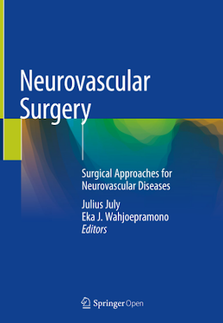 Neurovascular Surgery Surgical Approaches for Neurovascular Diseases Pdf