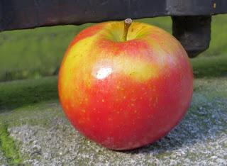 Ariane apple