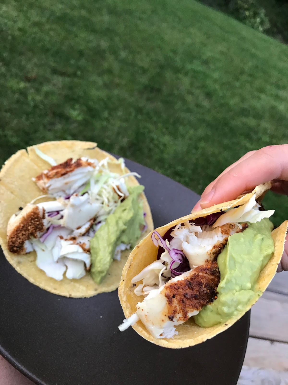 Wild game wild gains alaskan halibut fish tacos for Halibut fish tacos
