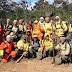 Trabalho de brigadistas é fundamental para combate a incêndios florestais