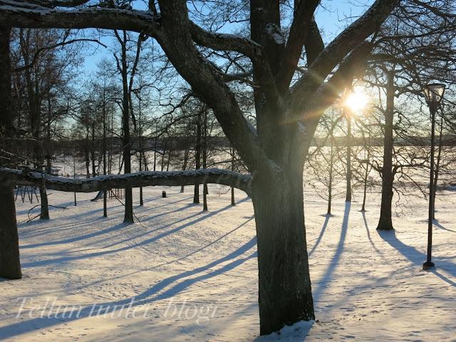 mukkulan kartano, lahti, talvikuvat