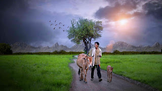 farmer photo by mmp picture