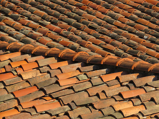 Tiled roofs, Via Borsi, Livorno
