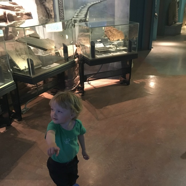 National-Museum-Cardiff-a-toddler-in-gallery-pointing-the-way
