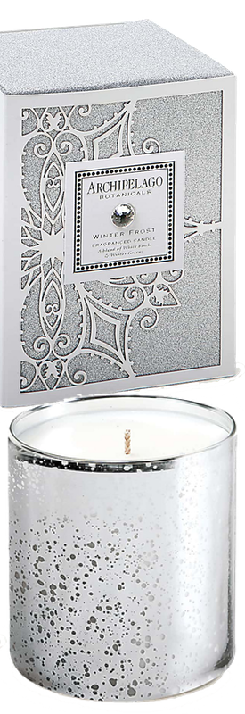 ARCHIPELAGO BOTANICALS WINTER FROST LARGE JAR CANDLE