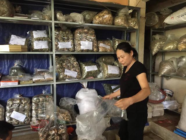 Lương y Triệu Thị Bình đang bốc thuốc chữa bệnh xương khớp.