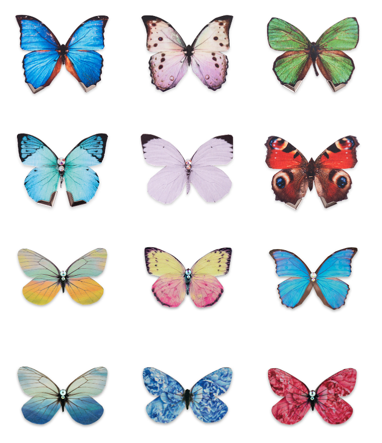 the butterfly effect | Anna Elisabeth