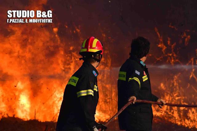 Έκτακτο: Πυρκαγιά σε αυτοκίνητο έξω από το Άργος - Με εγκαύματα ο οδηγός