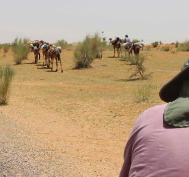 boko haram ride camel niger state