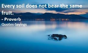 soil quotes