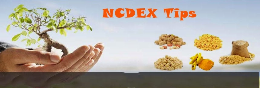 3Mteam Today NCDEX Profit calls, COmmodity tips, ncdex market news