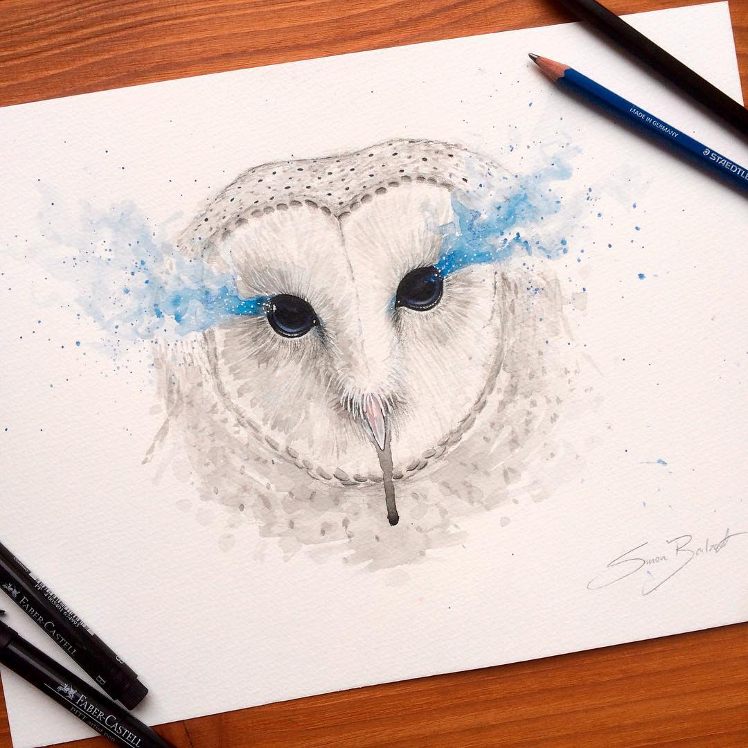 22-Eyes-of-Wisdom-Barn-Owl-Simon-Balzat-Colored-Pencils-make-Beautiful-Drawings-www-designstack-co