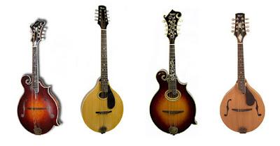 Diferentes modelos de mandolina