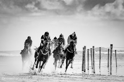 amazing black and white horse racing photo, horse racing, racing tips,