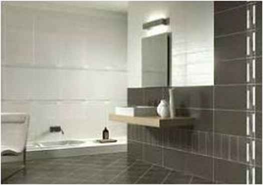 Bathroom Designs Indian Apartments Exotic