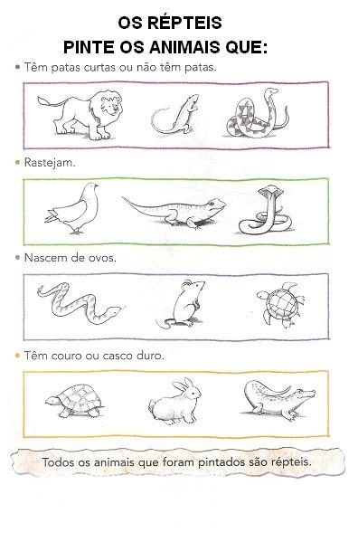 Animais Repteis Atividades Exercicios Desenhos Colorir Imprimir