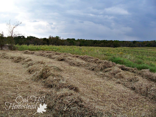 Baling hay by hand