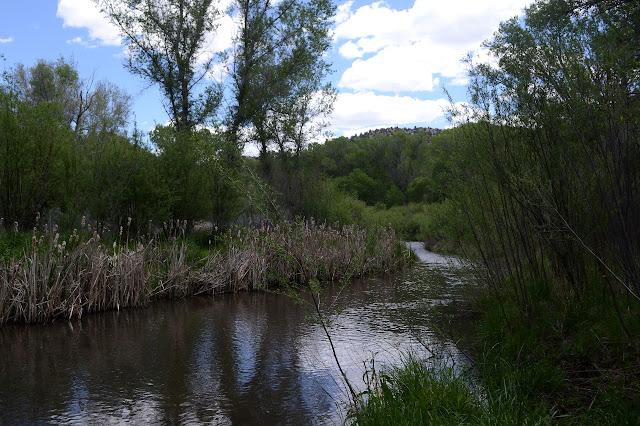 sedate river