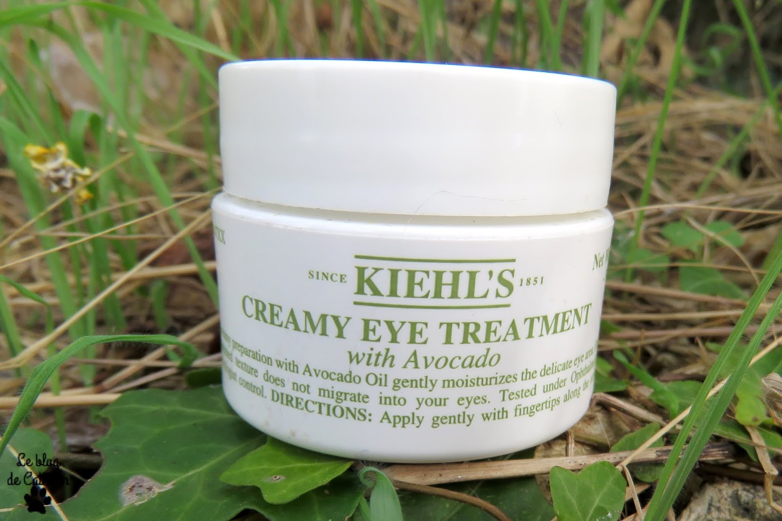 Creamy Eye Treatment With Avocado - Crème Contour des yeux à l'avocat - Kiehl's