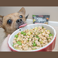 Tylee's frozen Dog food review