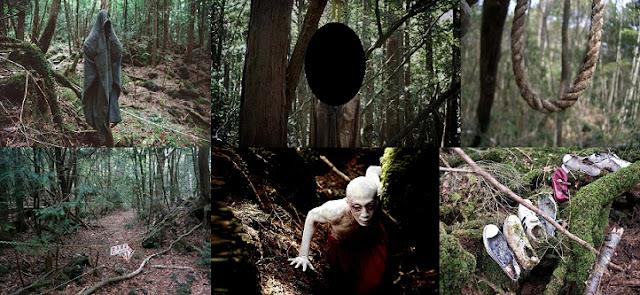 Japonya'nın Ünlü Ormanı : Aokigahara