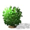 где взять семена жвачного растения симс 4,