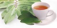 ataupun secara tradisional dengan mefaedahkan ramuan  Pengobatan asam urat dengan daun salam