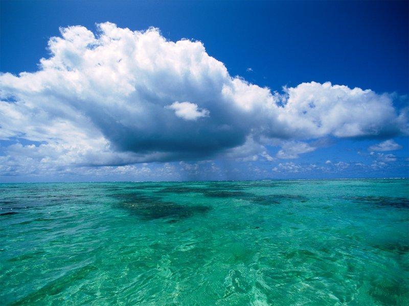 Heart Broken Quotes Hindi Wallpaper All Photos Gallery Blue Sky Ocean Sky Blue Ocean Media