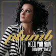 ZeroMusiChannel: Plumb - Need You Now (How Many Times) (Canción)