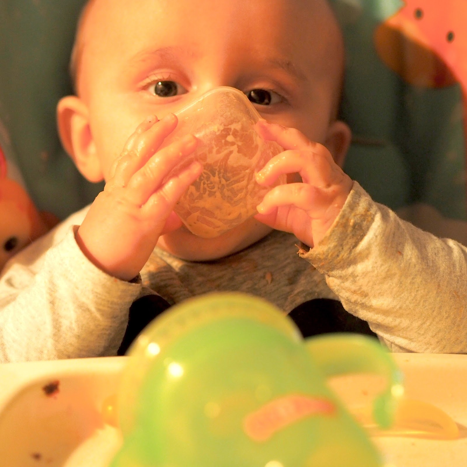 Not Your Average Baby Led Weaning