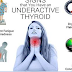 Your Thyroid Controls Your Entire Body (Here Is How To Keep It Healthy)