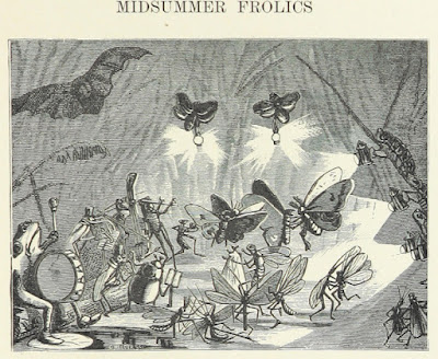 Midsummer Frolics illustration 1894