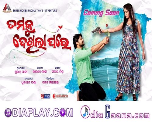 Tamaku Dekhila Pare - ତମକୁ ଦେଖିଲା ପରେ (2017) - Odia Film HD Video Songs Download