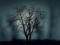 Kisah Setan dan Seorang Penebang Pohon