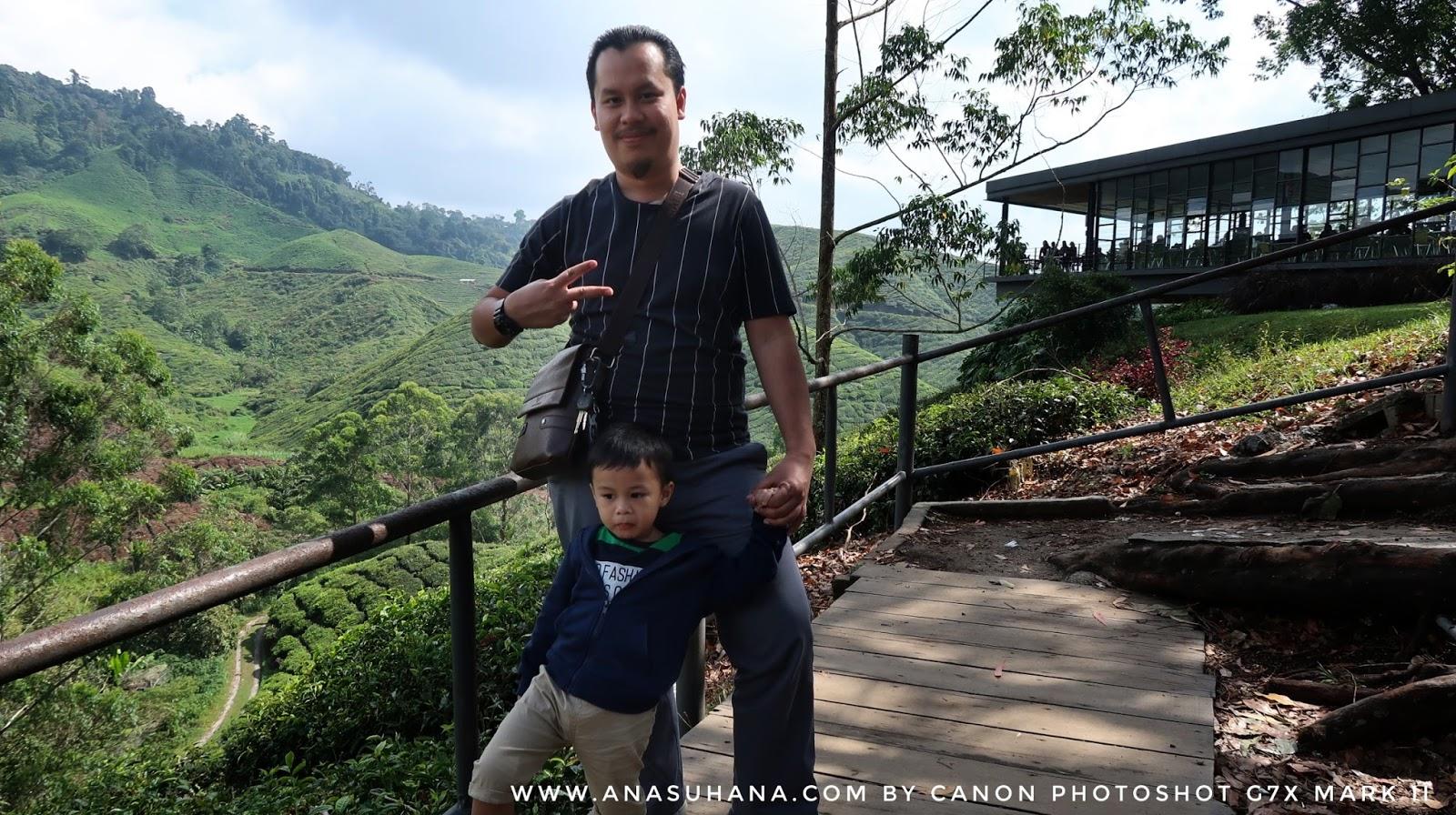 10 Tempat Menarik di Cameron Highlands Wajib Singgah