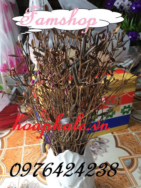 Cua hang hoa  so quyen ngu dong tai Soc Son