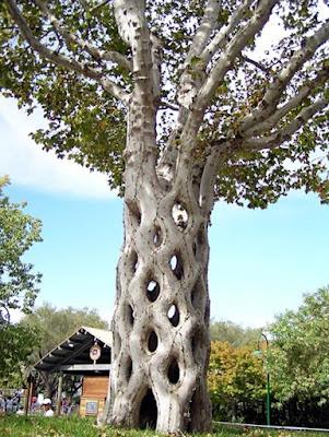Karya Seni Membentuk Pohon yang Unik