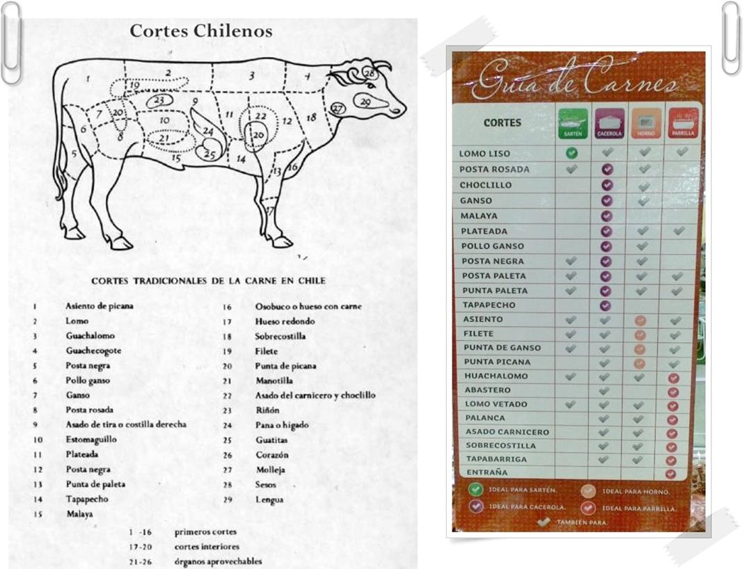 f611c64d5e Valle Del Gallo  GUIA DE CORTES DE CARNE DE VACUNO O RES  RED MEAT CUTS