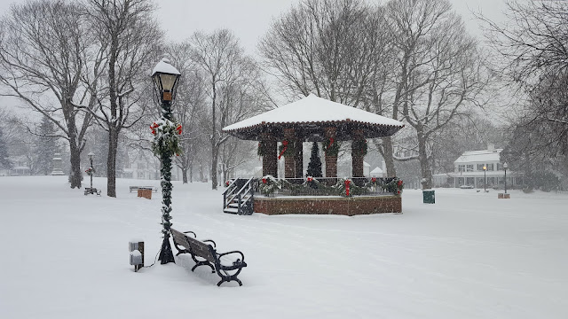 snowy Franklin Town Common