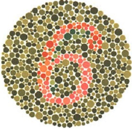 contoh tes buta warna