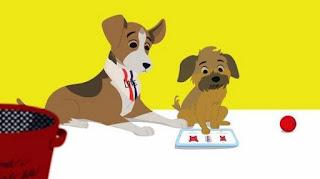 Ellen's Pet Dish, pet show, pets, dog, cats