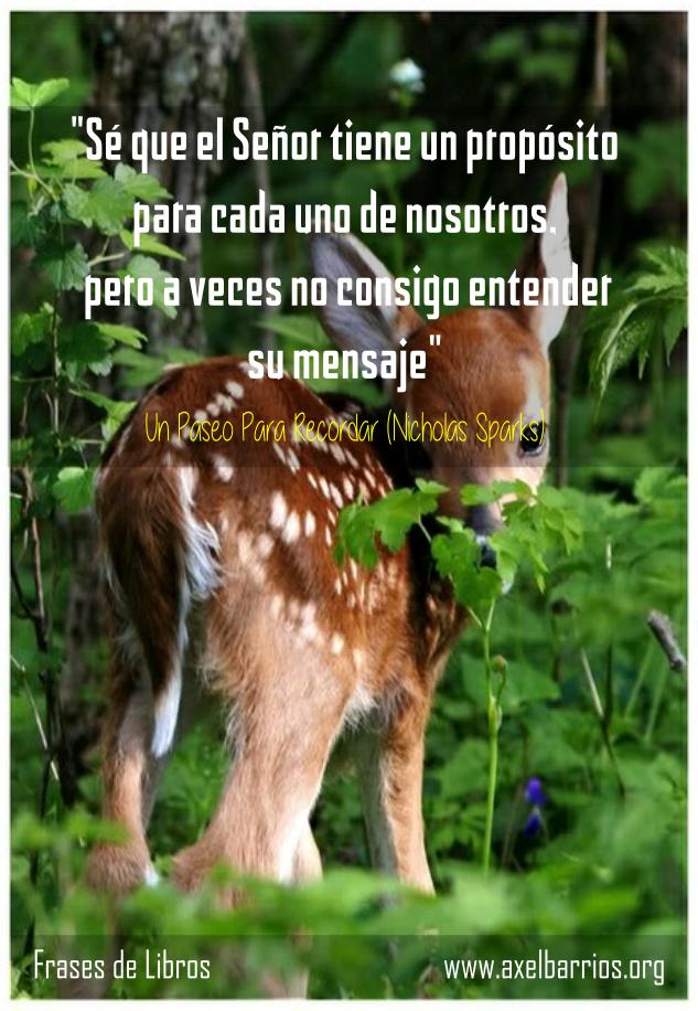 Frases Del Libro Un Paseo Para Recordar Axel Barrios